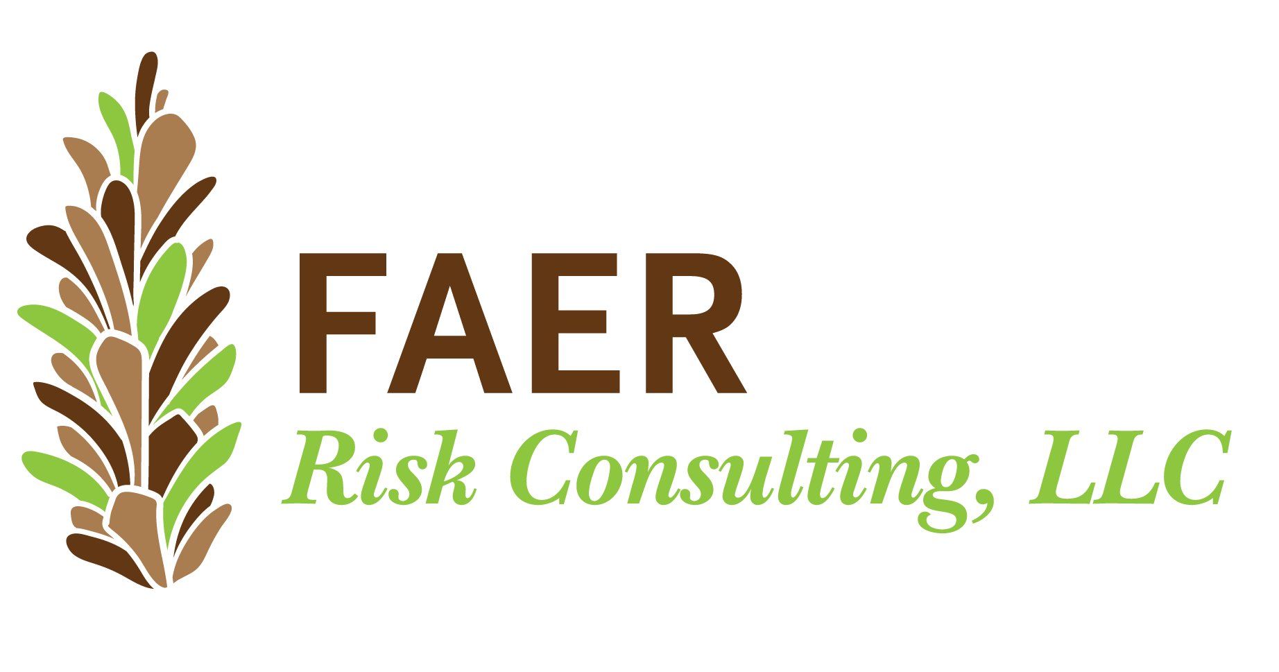 Faer Risk Consulting, LLC